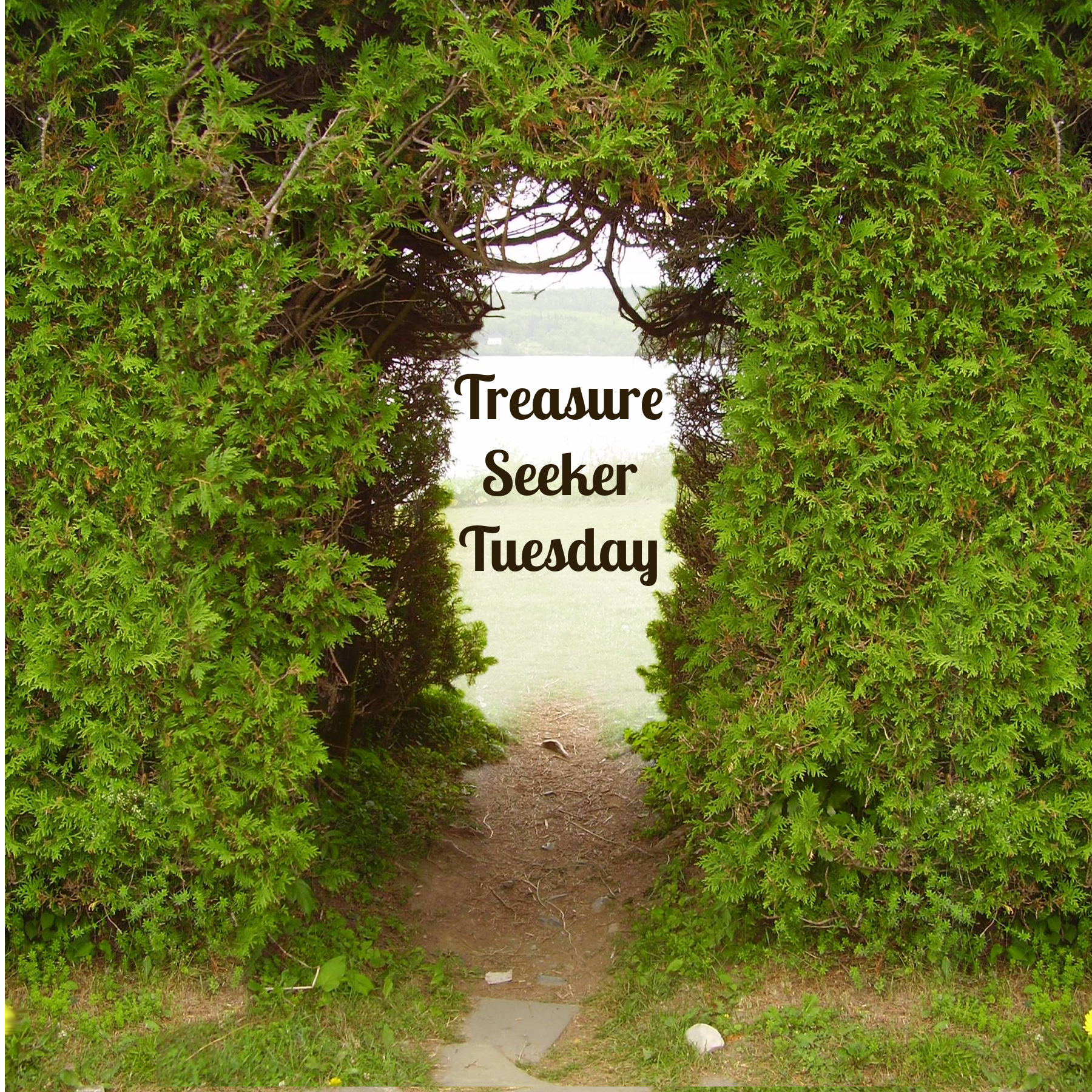 Treasure Seeker Tuesday # 24 When Opportunity Knocks