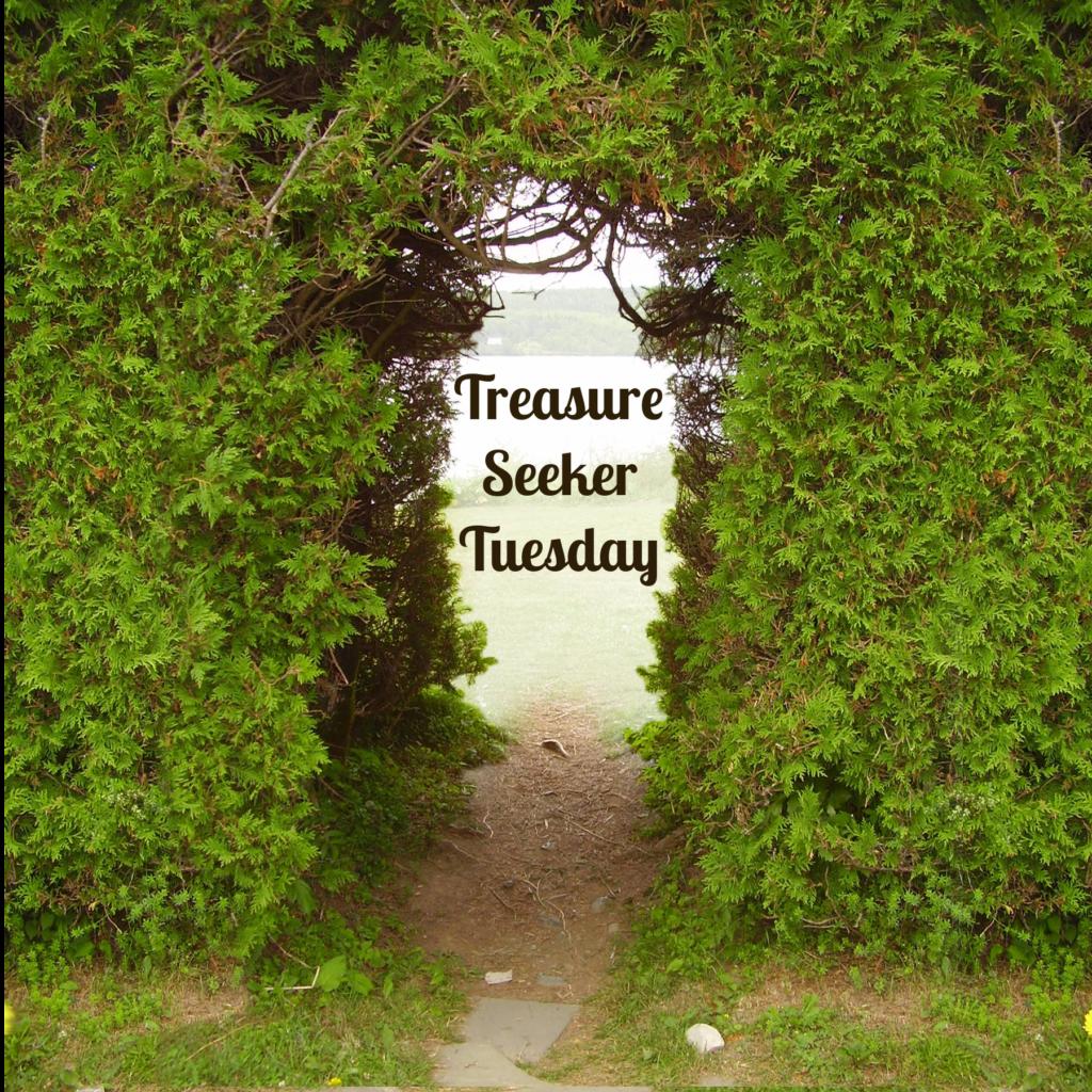 Treasure Seeker Tuesday