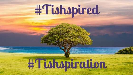 #Tishspired #Tishspiration A single tree surrounded by grass on the ground, water showing above the grass and a colourful sky.