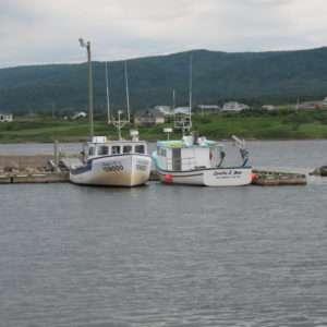 Fishing boats at Belle Cote Wharf