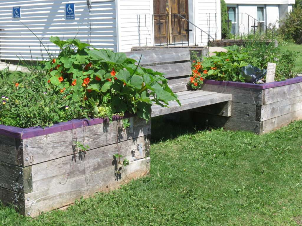 The bench between the two edible plant garden boxes.
